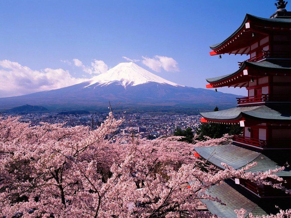 За что могут арестовать в Японии?