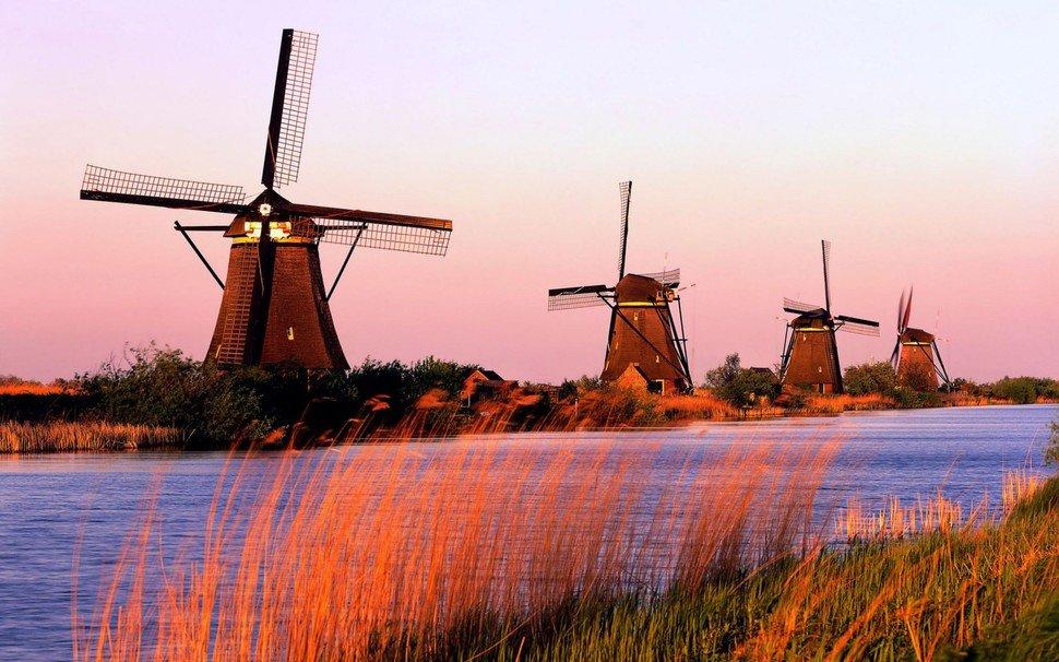 За что могут арестовать в Голландии?
