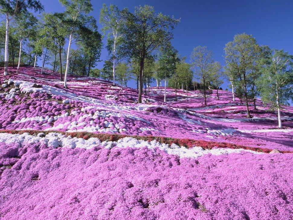 Перевод сделан в Бюро переводов iTrex, Москва: Топ 22: самые красочные места планеты