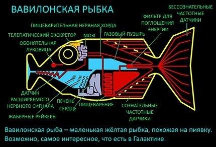 Вавилонская рыбка — переводчик