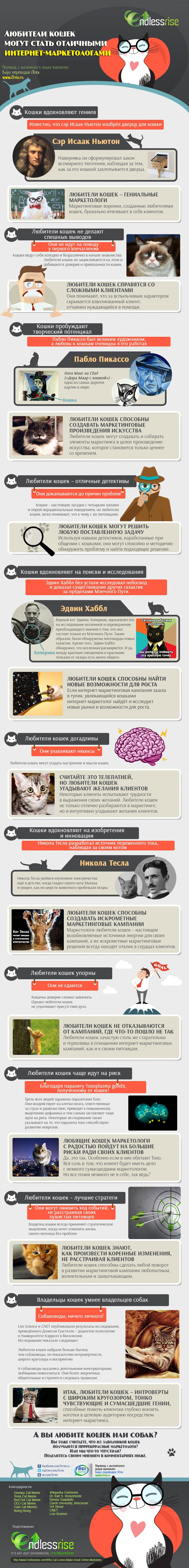 Перевод сделан в Бюро переводов iTrex, Москва: Любители кошек могут стать отличными интернет-маркетологами