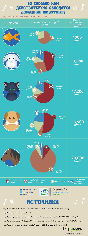 Во сколько нам действительно обходятся домашние животные?