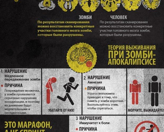 Теория выживания при зомби-апокалипсисе