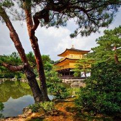 Read more about the article День культуры в Японии