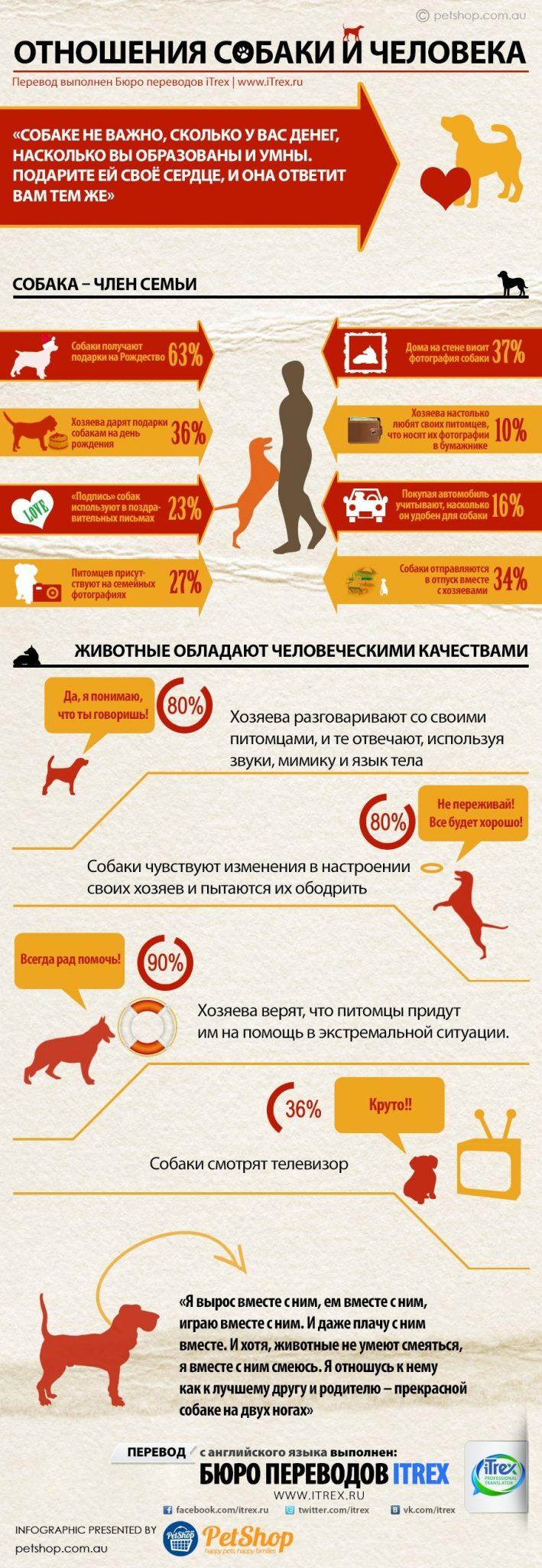 Отношения собаки и человека