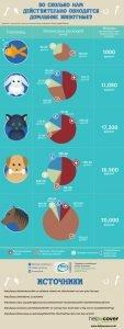 Read more about the article Во сколько нам действительно обходятся домашние животные?