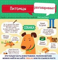 Read more about the article Питомцы разговаривают