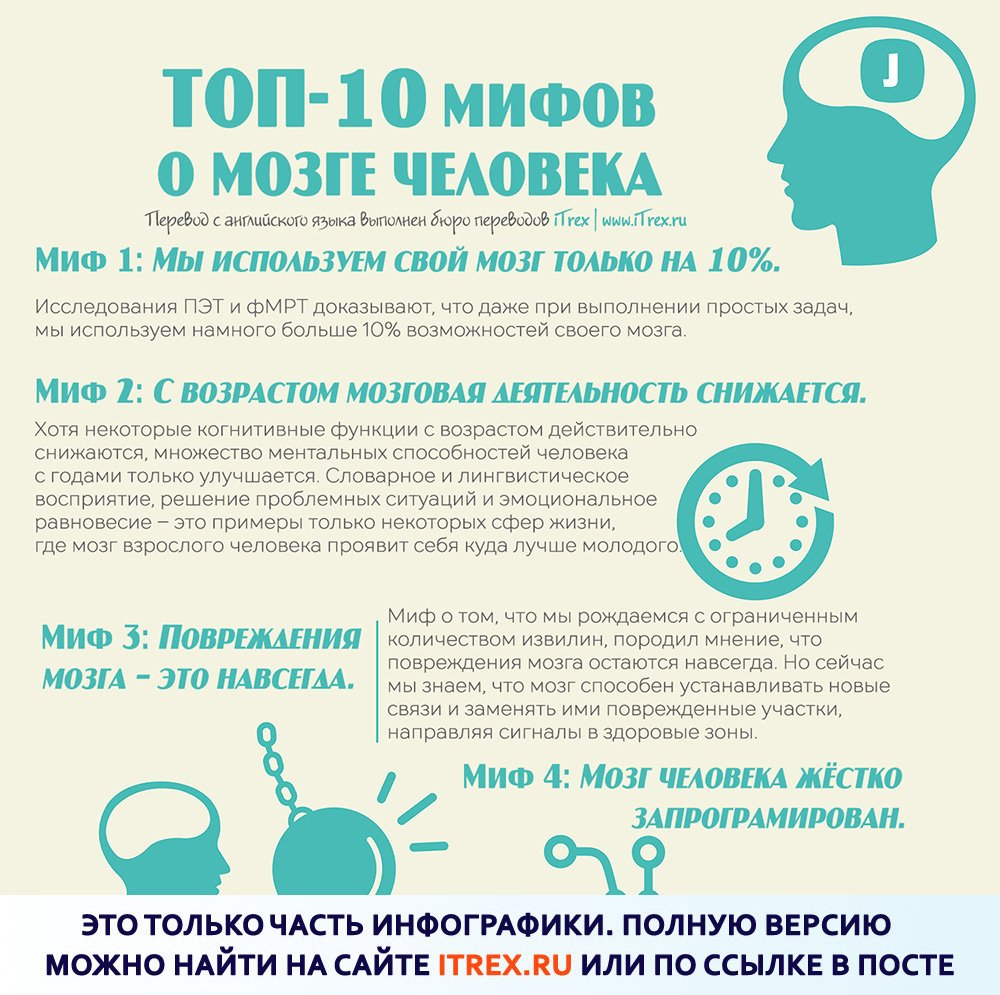 You are currently viewing Топ-10 мифов о мозге человека
