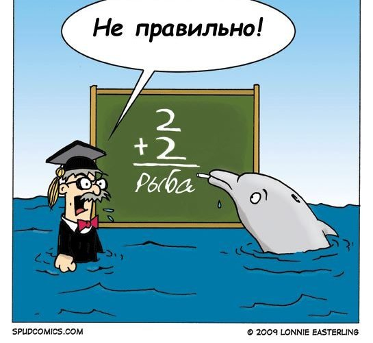 Будущее за дельфинами