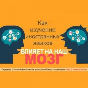 Read more about the article Как изучение иностранных языков влияет на наш мозг