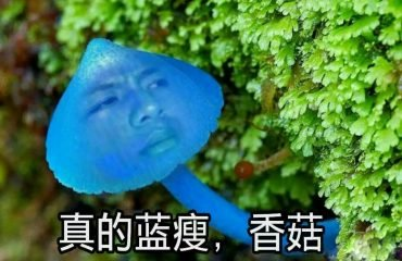 Синий худой гриб