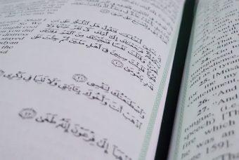 Из арабского в английский: заимствования, о которых вы не догадывались